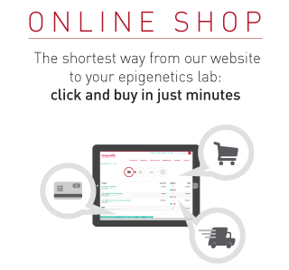 Online shop: click and buy in just minutes