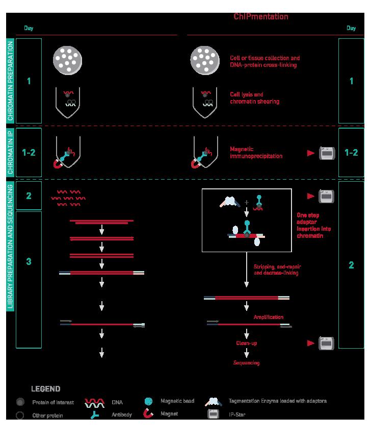 Diagenode-ChIPmentation