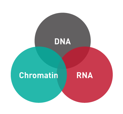 DNA-RNA-Chromatin-Diagenode