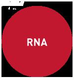 "RNA-seq-Diagenode"""