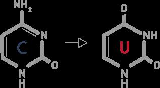RRBS-Diagenode