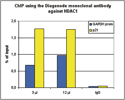 HDAC1 Antibody ChIP Grade