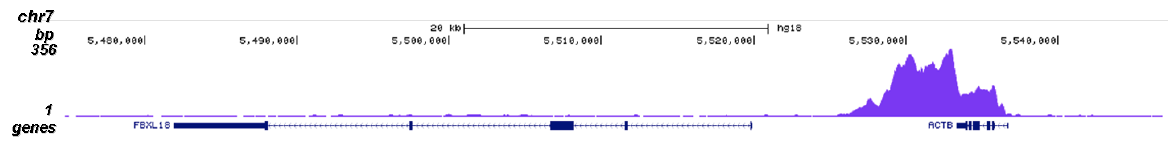 Pol II S2p Antibody validated in ChIP-seq