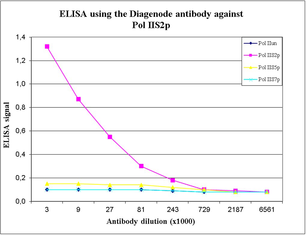 Pol II S2p Antibody ELISA validation