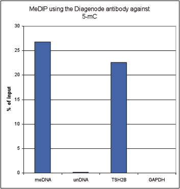 5-methylcytosine (5-mC) Antibody validated in MeDIP