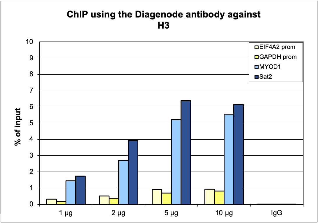 H3pan Antibody ChIP Grade