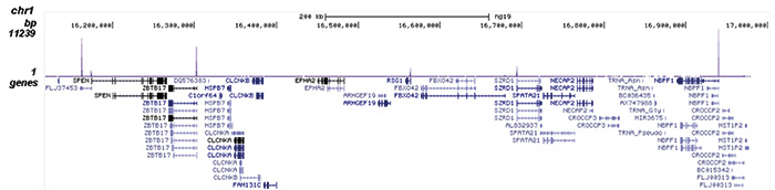 ChIP-seq figure 2