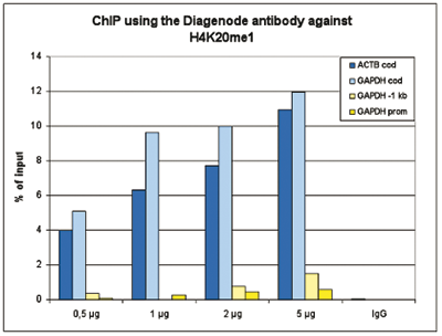 H4K20me1 Antibody ChIP-seq