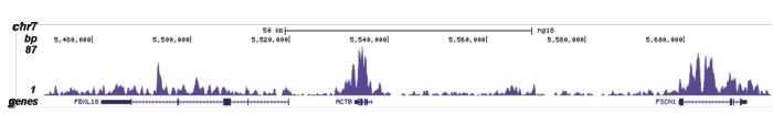 H4K20me1 Antibody for ChIP-seq
