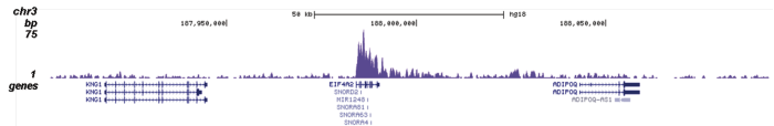 H4K20me1 Antibody validated in ChIP-seq