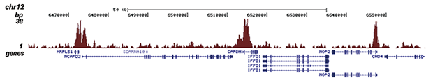 H3K4me3 Antibody for ChIP-seq assay