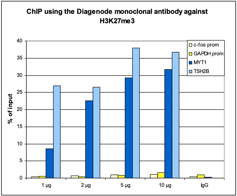 H3K27me3 Antibody ChIP Grade