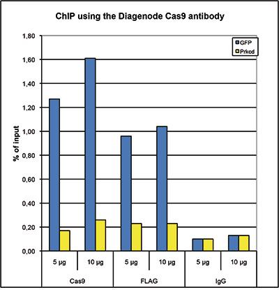 ChIP figure 1
