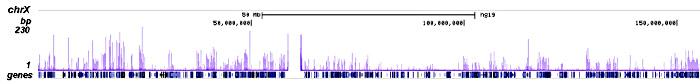 H2A.ZK7ac Antibody ChIP-seq Grade