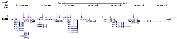 H2A.ZK7ac Antibody for ChIP-seq