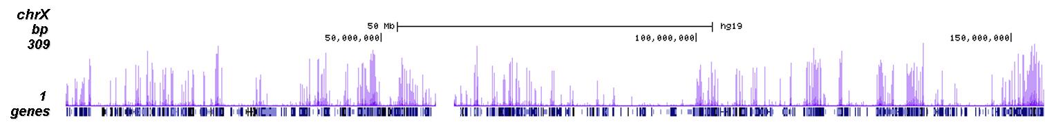 H3K9ac Antibody ChIP-seq Grade