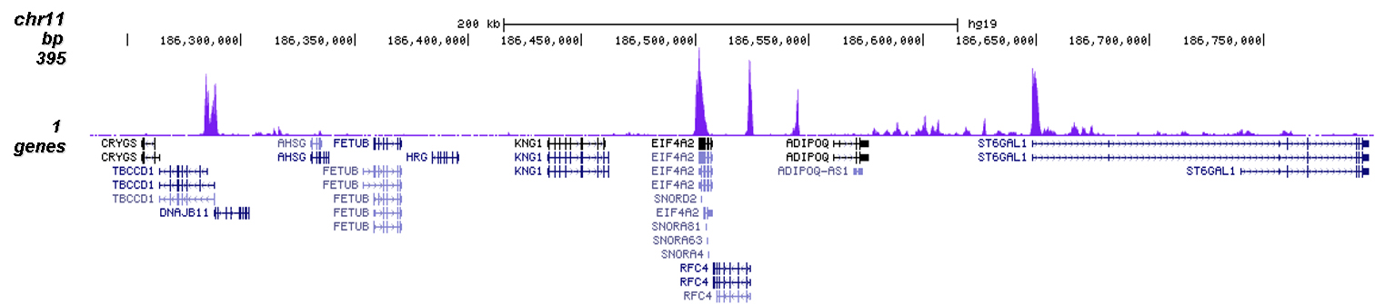 H3K9ac Antibody validated in ChIP-seq