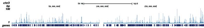 ETO Antibody ChIP-seq Grade