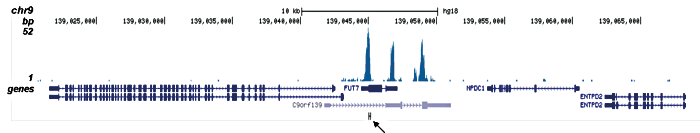 ETO Antibody for ChIP-seq assay