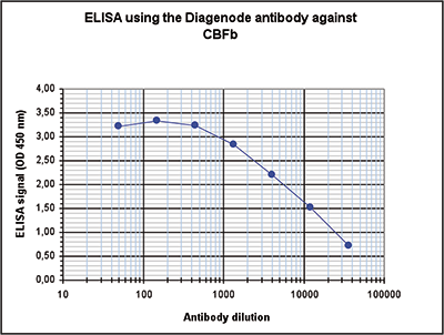 CBFb Antibody ELISA Validation