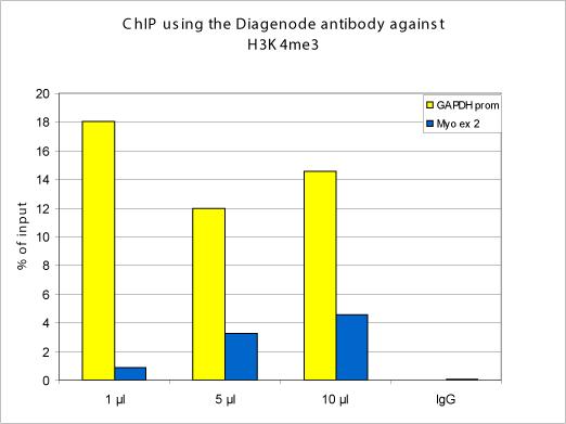 H3K4me3 Antibody ChIP Grade