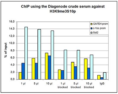 H3K9me3S10p Antibody ChIP Grade