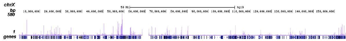 NFYA Antibody ChIP-seq Grade