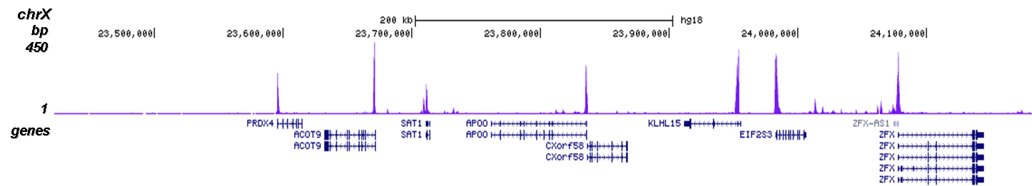 H3K9ac Antibody for ChIP-seq