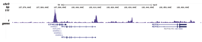 H4K5,8,12ac Antibody for ChIP-seq assay