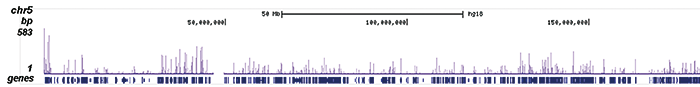 H4K5,8,12,16ac Antibody ChIP-seq Grade
