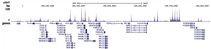 H4K5ac Antibody for ChIP-seq