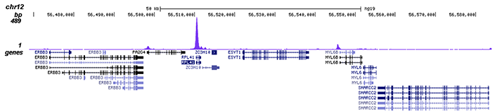 ChIP-seq figure C