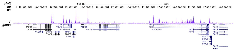 H3K4me2 Antibody for ChIP-seq