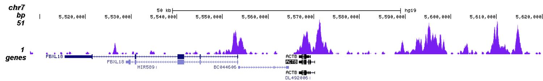 H3K4me2 Antibody for ChIP-seq assay