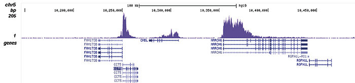 H3K79me2 Antibody validated in ChIP-seq
