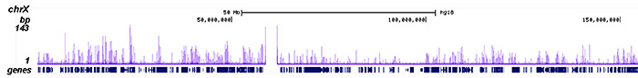 ChIP-seq figure A
