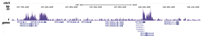 ChIP-seq figure E