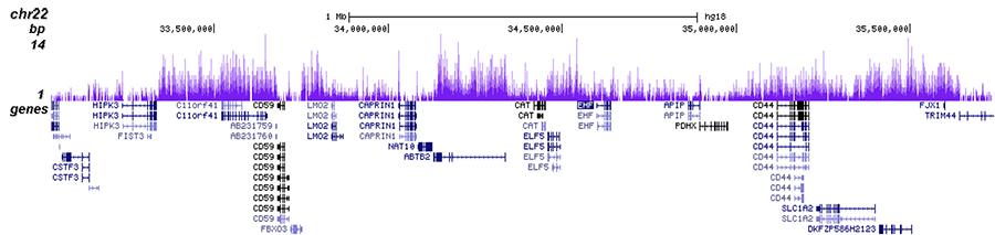 H3K27me3 Antibody for ChIP-seq