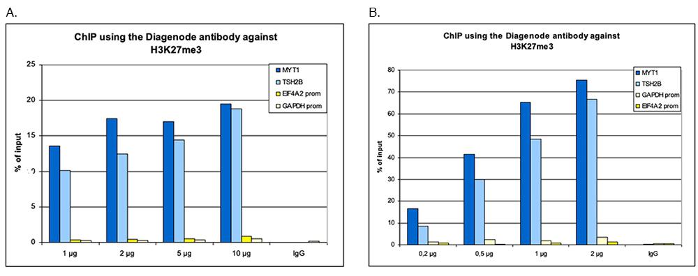H3K27me3 Antibody for ChIP