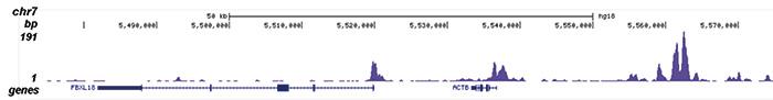 H2A.Zac Antibody ChIP-seq Grade