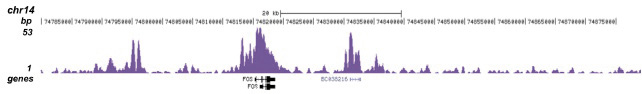 ChIP-seq figure D