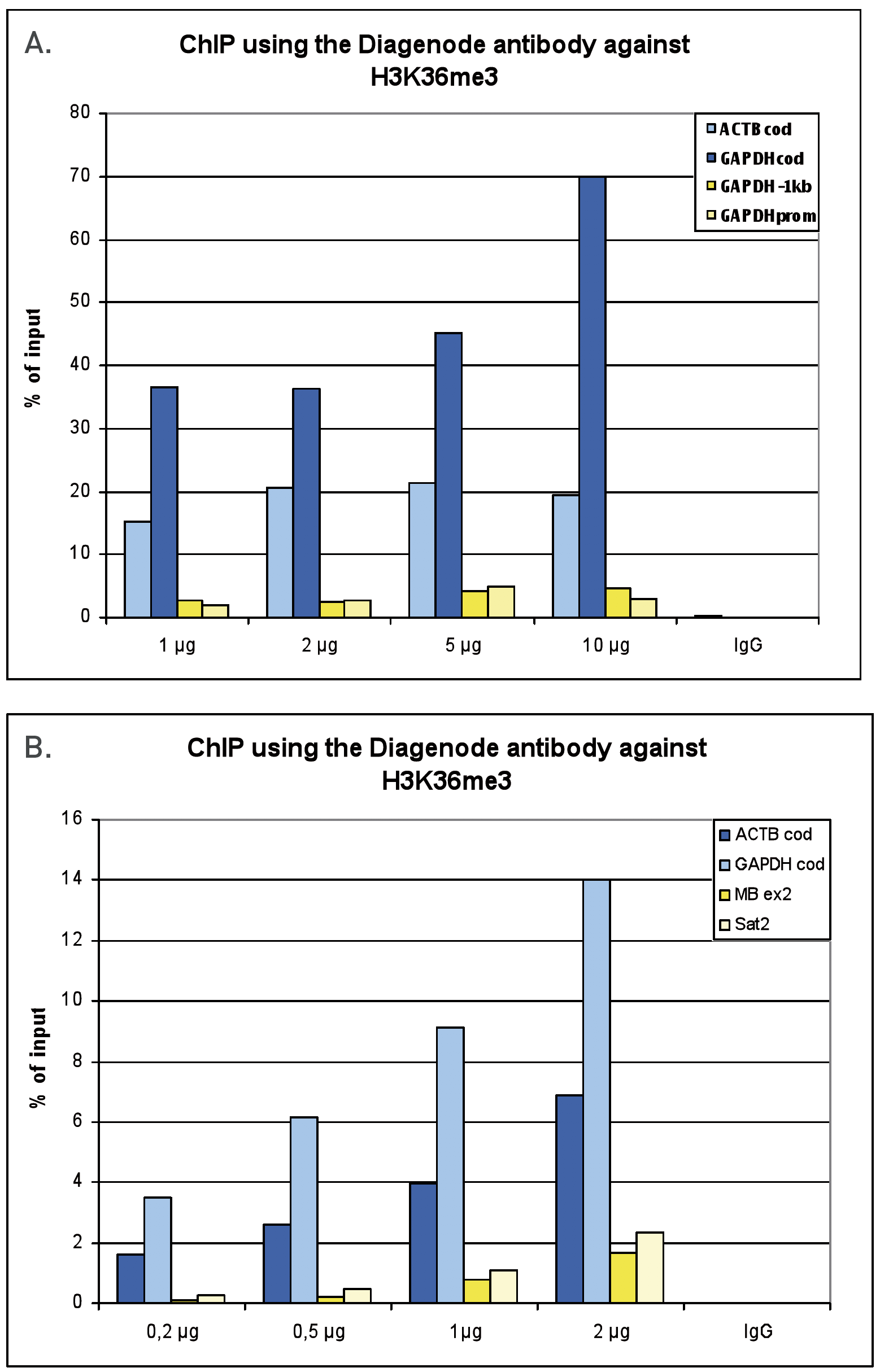 H3K36me3 Antibody ChIP Grade