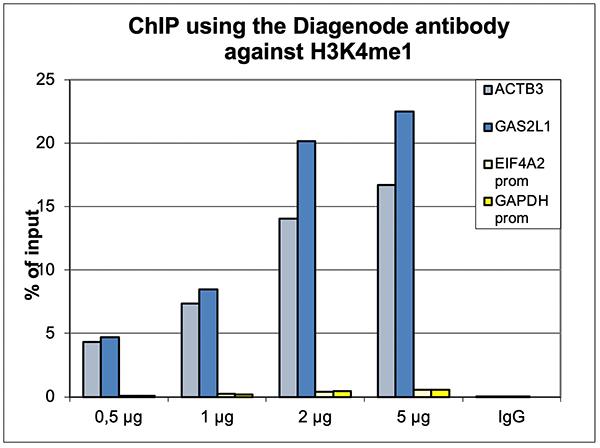 H3K4me1 Antibody ChIP Grade