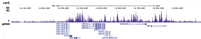 H3K4me1 Antibody for ChIP-seq assay