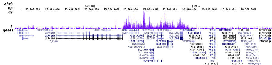 H3K27me3 Antibody ChIP-seq Grade