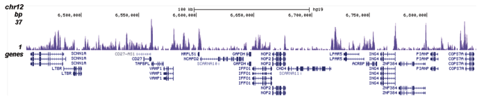 H2A.Z Antibody validated in ChIP-seq