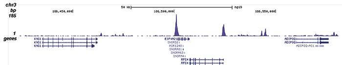 H2A.Zac Antibody for ChIP-seq assay