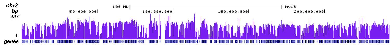 CTCF Antibody ChIP-seq Grade