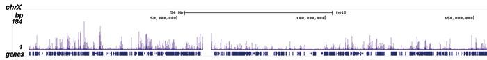 H2BK12ac Antibody ChIP-seq Grade