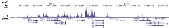 H2BK12ac Antibody for ChIP-seq